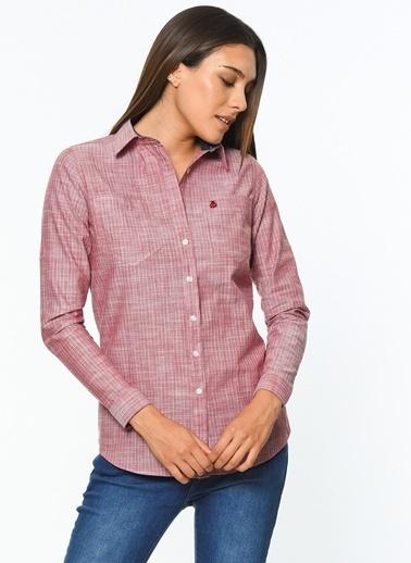 Çizgili Gömlek-Dewberry